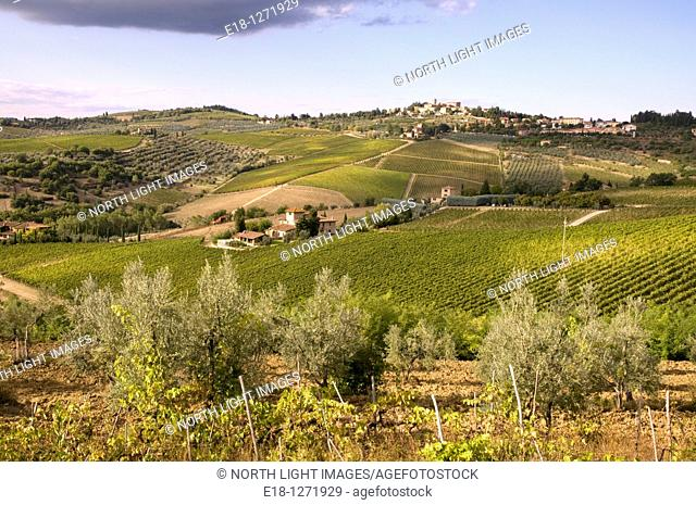 Italy, Tuscany, Panzano  Hill town in the heart of Chianti wine country