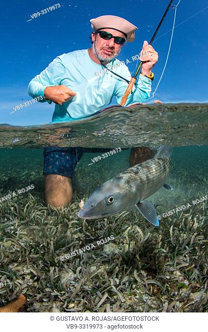 saltwater fly fishing Over/under off man hold a BIG BONEFISH underwater saltwater fly fishing los roques venezuela