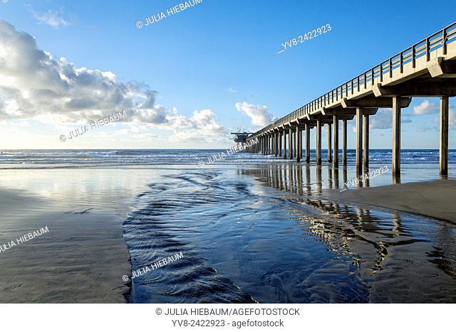 La Jolla Shores showing the Scripps pier at low tide, California