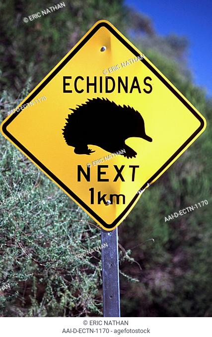Echidnas warning sign on a road in Australia