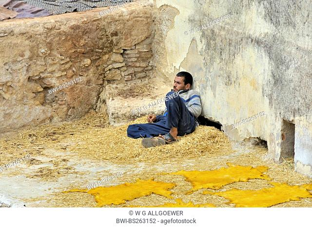 a young man resting next dyed animal skins at tannery of Chouwara, Morocco, Fes