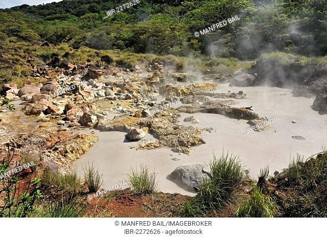 Boiling mud pool, Guanacaste province, Rincon de la Vieja National Park, Costa Rica, Central America