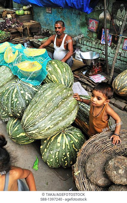 Huge pumpkin at the vegetable market, New Delhi, India