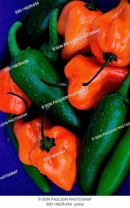 Close-up of red and green chili peppers