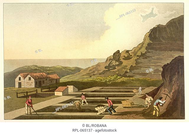 Men quarrying at an alum works. Image taken from The Costume of Yorkshire illustrated by a series of forty engravings being facsimiles of original drawings by G