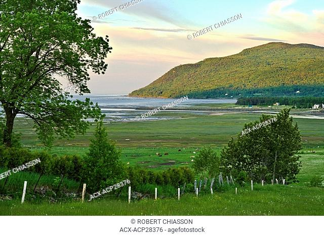 Middle estuary zone of the Gouffre River near the city of Baie-Saint-Paul. Charlevoix, Quebec, Canada