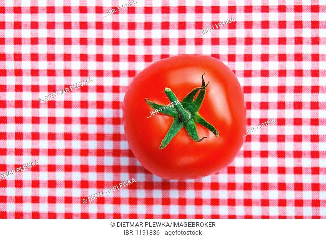Single vine tomato on red and white checked tablecloth