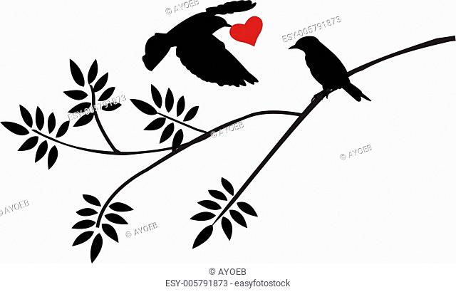 flying bird silhouette with a love for birds on a branch