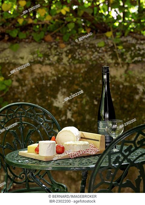 Still life, cheese buffet and wine on a cast-iron garden table in a backyard