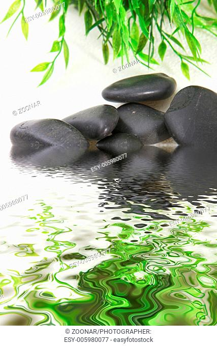 Shiny black stones in water