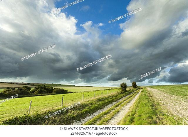 Summer afternoon in South Downs National Park, West Sussex, England