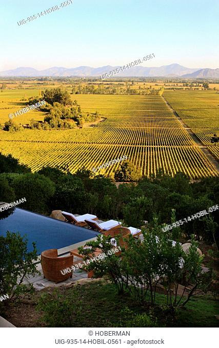 Casa Lapostolle Vineyards