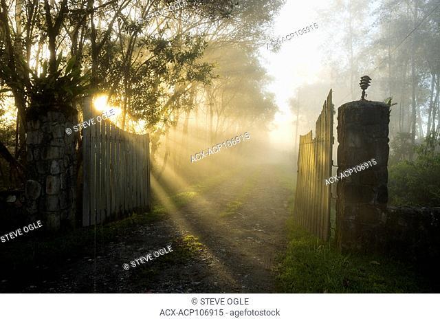 Foggy gates at Cabanas San Isidro, eastern slope of the Andes, Ecuador
