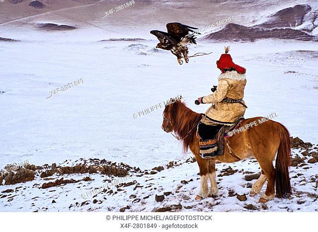 Mongolia, Bayan-Olgii province, Kazakh eagle hunter, Eagle hunting in winter in Altai mountains