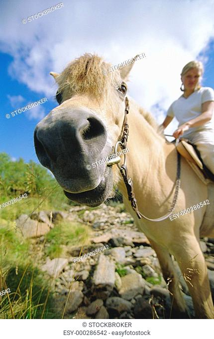 Woman outdoors riding horse in scenic location fisheye