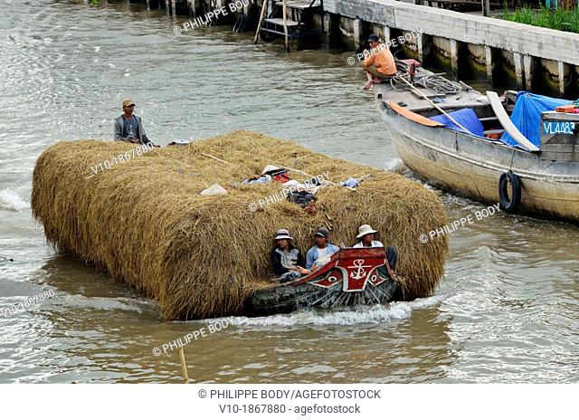 Vietnam, Mekong delta, Soc Trang, transporting rice thatch