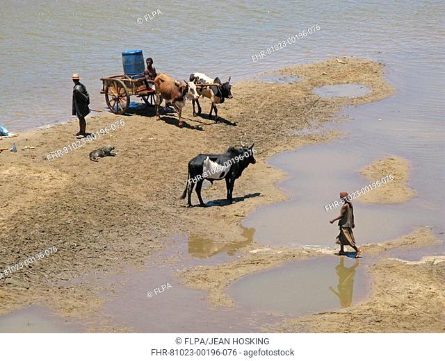 Malagasy people collecting river water, River Mandrare, Amboasary, Toliara Province, Madagascar