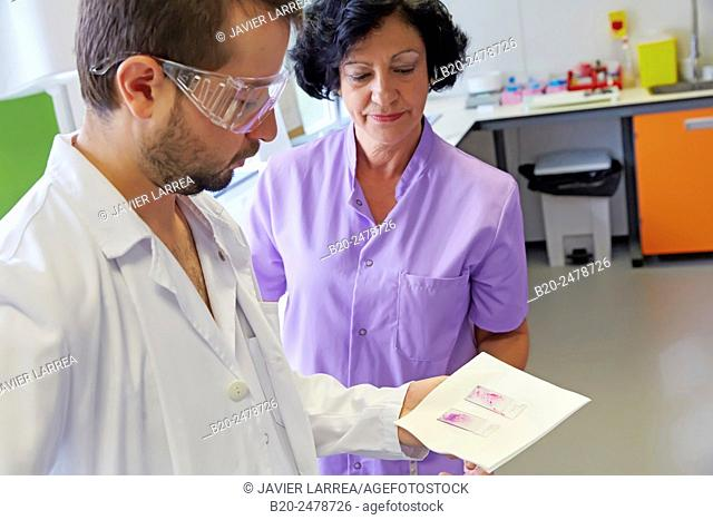 Doctors looking at medical sample, Cytology, Anatomic Pathology, Hospital Donostia, San Sebastian, Basque Country, Spain