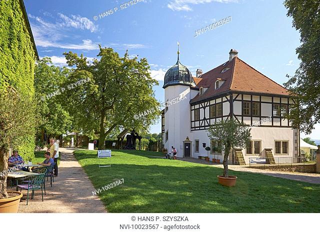 Winery Hoflössnitz, Radebeul, Saxony, Germany