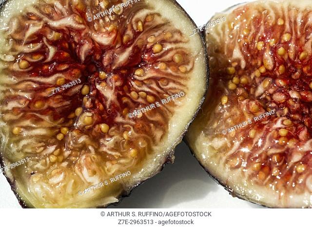 Cross section of a fig. Macro image