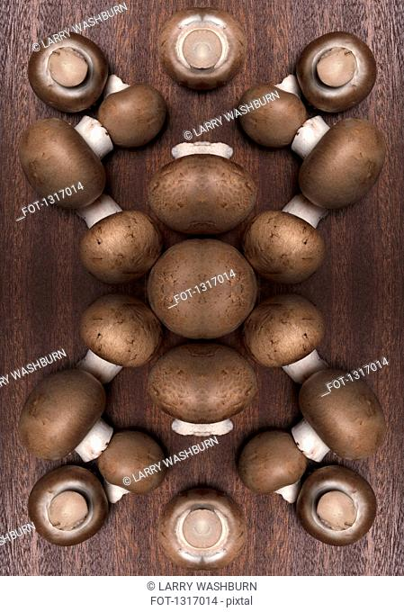 A digital composite of mirrored images of an arrangement of mushrooms