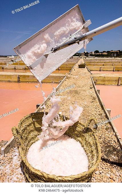 Flor de Sal del Trenc, visita guiada,Salobrar de Campos, Campos del Puerto,Majorca, Balearic Islands, Spain