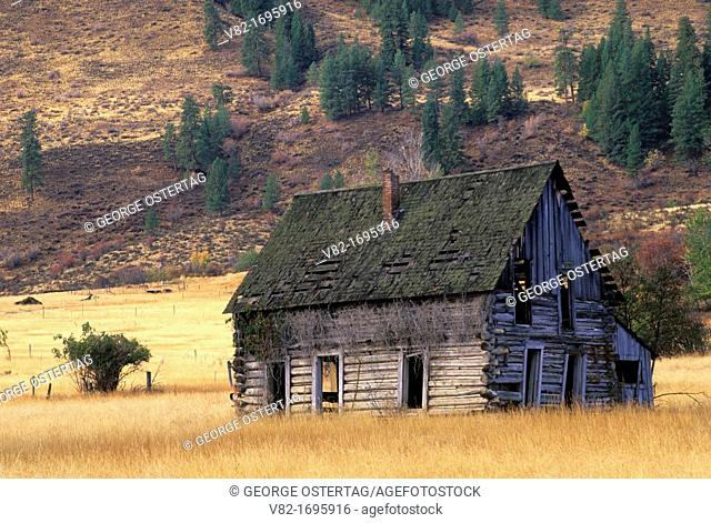 Cabin, Okanogan County, Washington