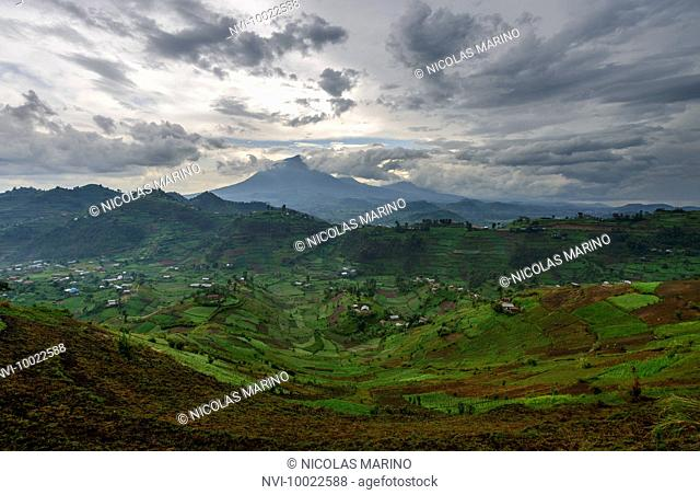 Virunga Mountains, South western Uganda, Africa