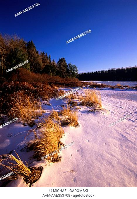 Winter Shoreline, Lower Lake, Promised Land SP, Poconos, Pennsylvania