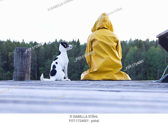 Rear view of woman wearing yellow raincoat sitting with dog on jetty at forest