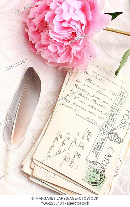 Beautiful pink peony with old postcards romantic background