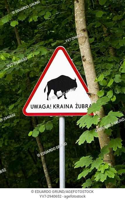 Traffic sign with the warning that we can stumble upon some bison. Bialowieza National Park. Bialowieza, Podlasie, Poland, Europe