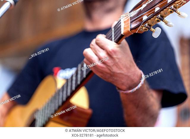 male musician playing the spanish guitar