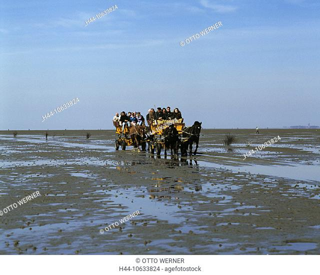 10633824, excursion, Cuxhaven, Germany, Europe, Duhner watts, low, ebb, tide, tides, island, isle, Neuwerk, coach, coaches, se
