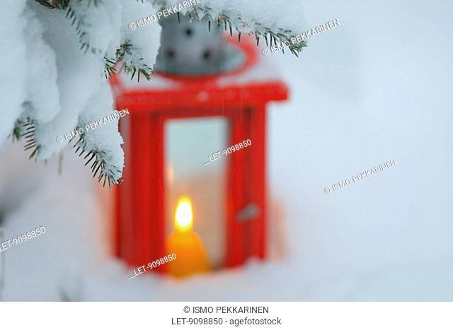 A candle lantern behind a snowy tree