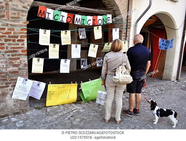 Spilamberto (Modena, Italy): cats adoption stall in via Obici