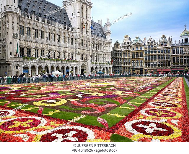 flower carpet on Grand-Place, Brussels, Brabant, Belgium - BRUESSEL, BRABANT, BELGIEN, 17/08/2008