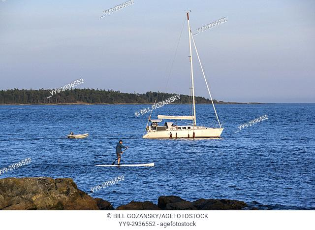 Stand-up Paddleboarder near Cattle Point, Uplands Park, Oak Bay, Victoria, Vancouver Island, British Columbia, Canada
