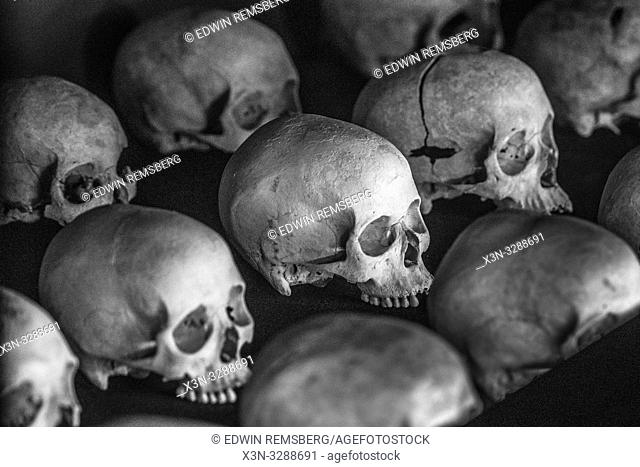 Damaged skulls of known victims of the 1994 Rwandan Genocide remain interred inside of of the Kigali Genocide Memorial as a testament to those lost in the...