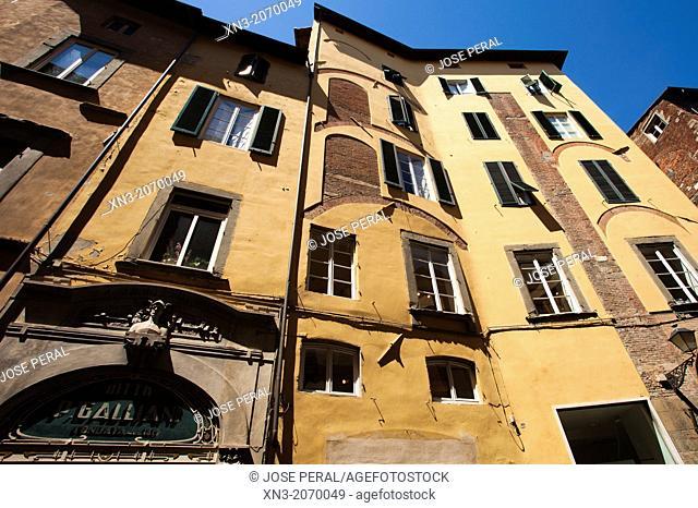 Via Roma, Rome Street, Lucca, Tuscany, Italy, Europe