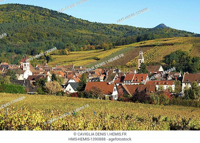 France, Haut Rhin, Alsace wine road, Riquewihr, labeled Les Plus Beaux Villages de France (The Most Beautiful Villages of France)