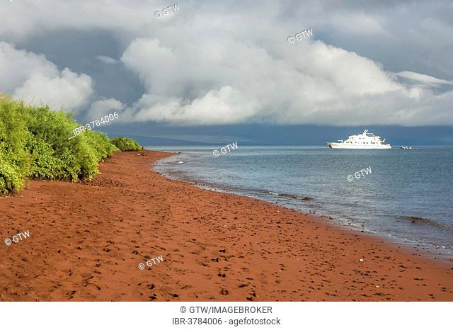Red sandy beach, Rábida Island, Galapagos, Unesco World Heritage Site, Ecuador