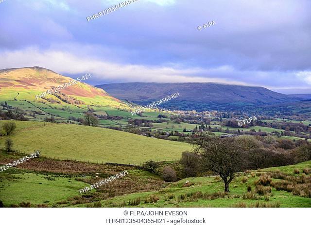 View of pasture and fells, near Sedbergh, Cumbria, England, November