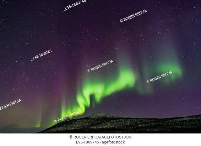 Northern Lights Aurora Borealis in Scandinavia