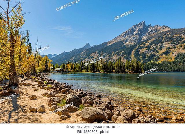 Lake, Jenny Lake, Grand Teton Mountain, Teton Range Mountain Range, Grand Teton National Park, Wyoming, USA