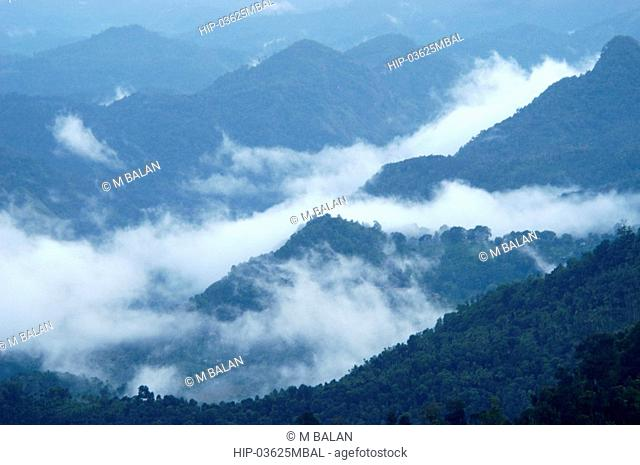 MISTY HILLS OF WESTERN GHATS SEEN FROM MUNNAR ROAD