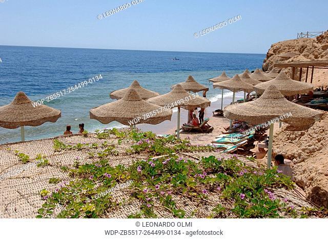Egypt, Sharm el Sheik, Club Reef Resort, coastline and beach umbrellas