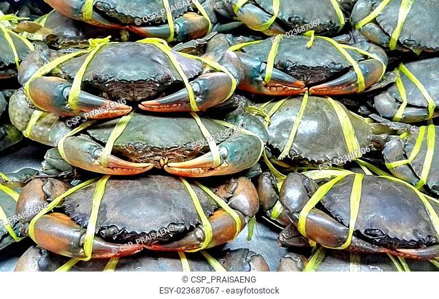 Fresh Crab in sea food market