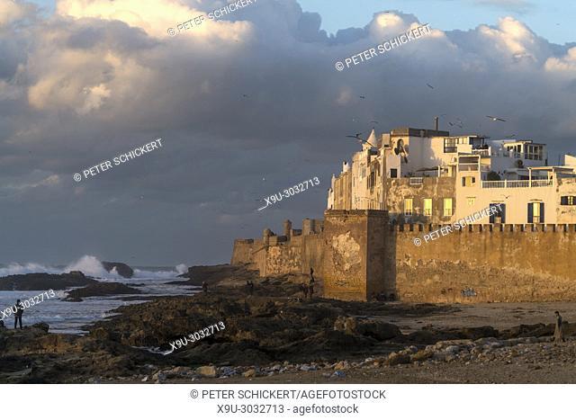 city wall and medina on the coast in Essaouira, Kingdom of Morocco, Africa