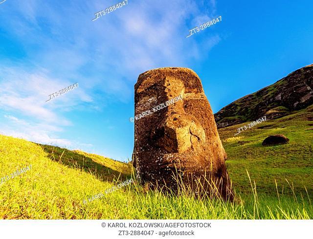 Moai at the quarry on the slope of the Rano Raraku Volcano at sunrise, Rapa Nui National Park, Easter Island, Chile